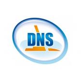 Пульт DNS S19AL10F